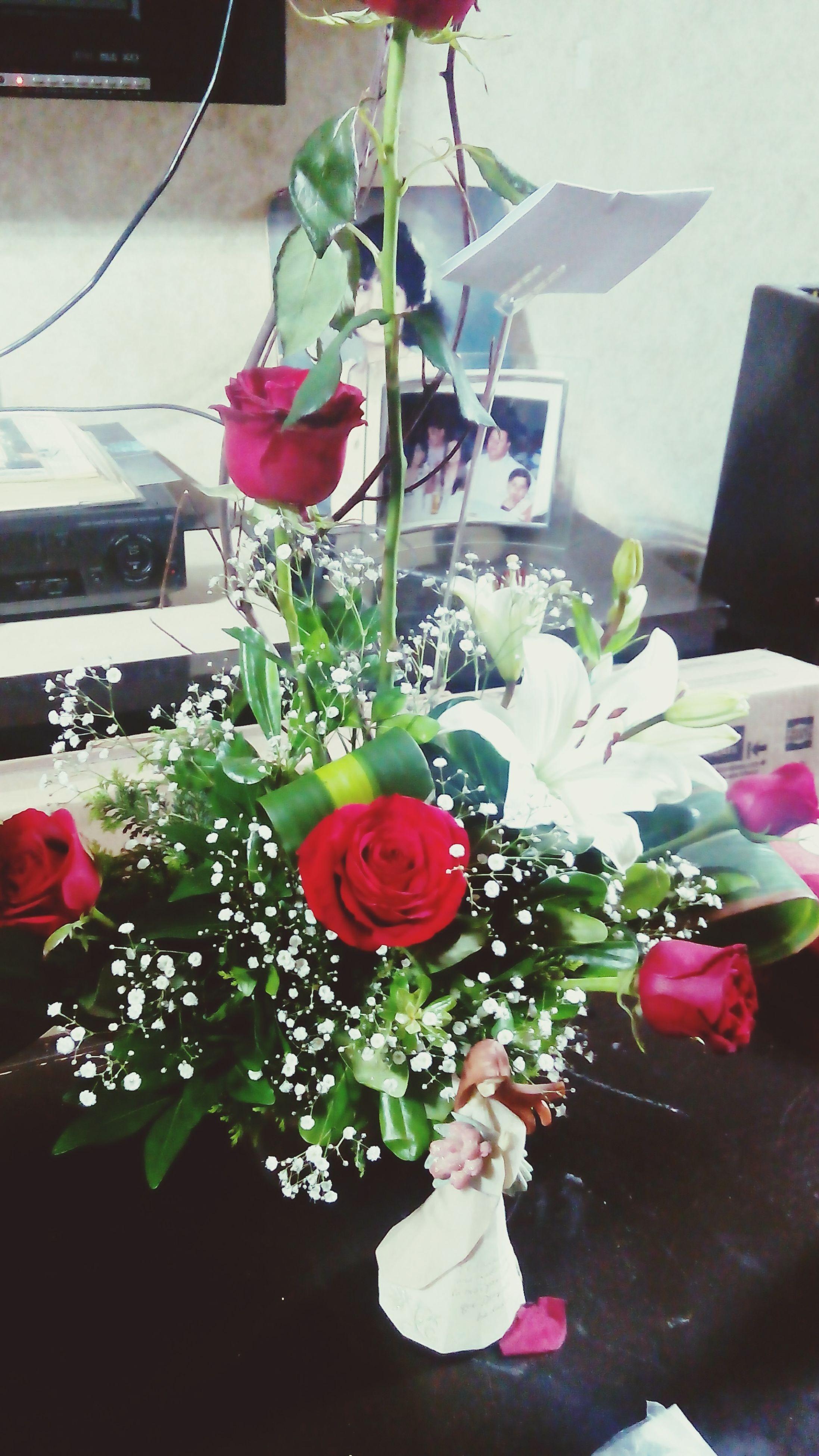 flower, indoors, petal, fragility, freshness, vase, decoration, table, flower head, rose - flower, potted plant, pink color, home interior, plant, bouquet, flower pot, flower arrangement, growth, bunch of flowers, close-up