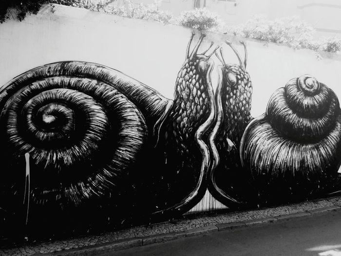 Slugs Slug Slug Snail Bugs Nature Creatures Slugs Love Eyeem Slug Life Streetphotography Street Painting