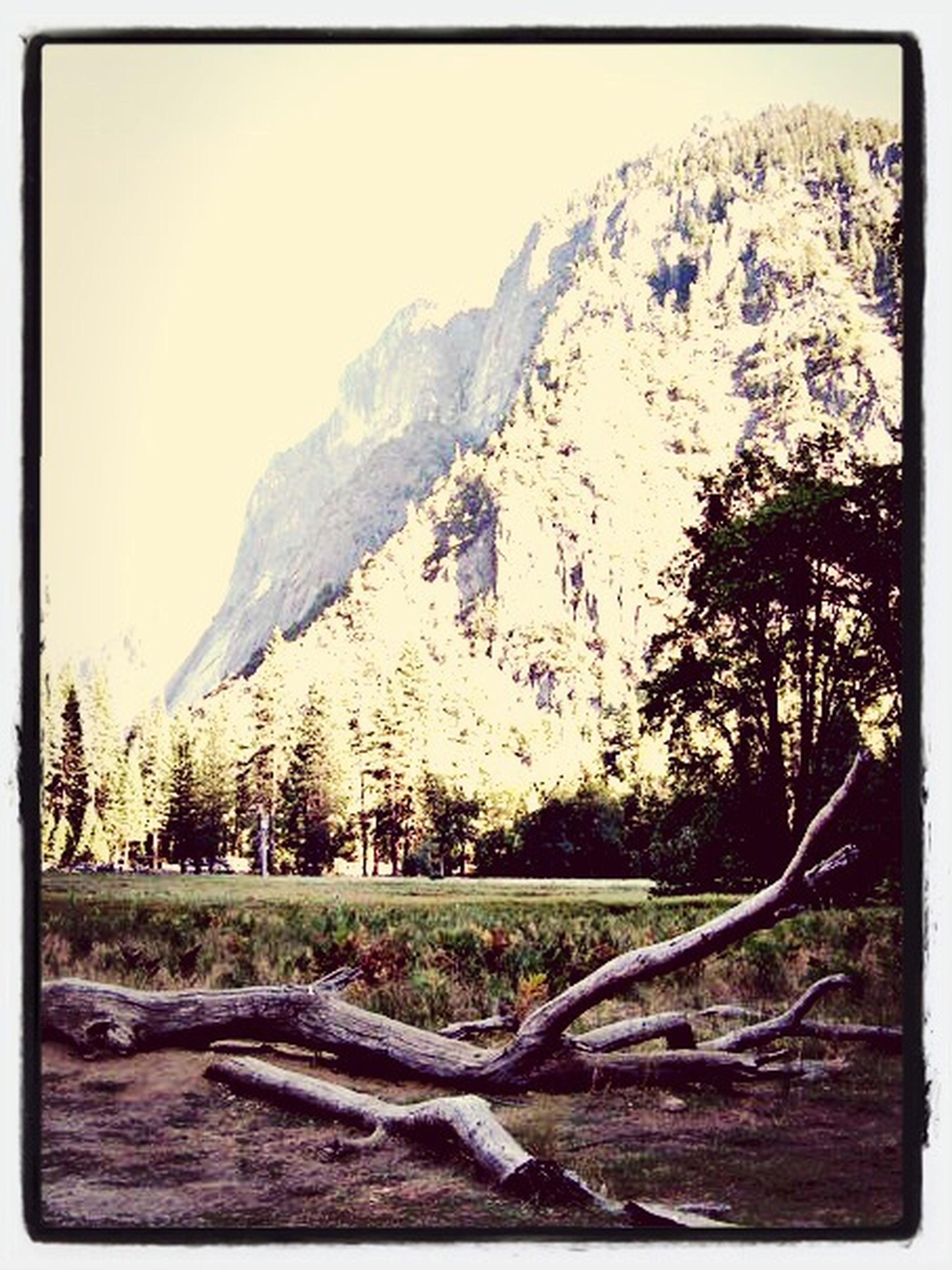 transfer print, auto post production filter, tree, clear sky, water, mountain, nature, tranquility, sky, tranquil scene, rock - object, scenics, beauty in nature, built structure, day, outdoors, sunlight, no people, non-urban scene, architecture