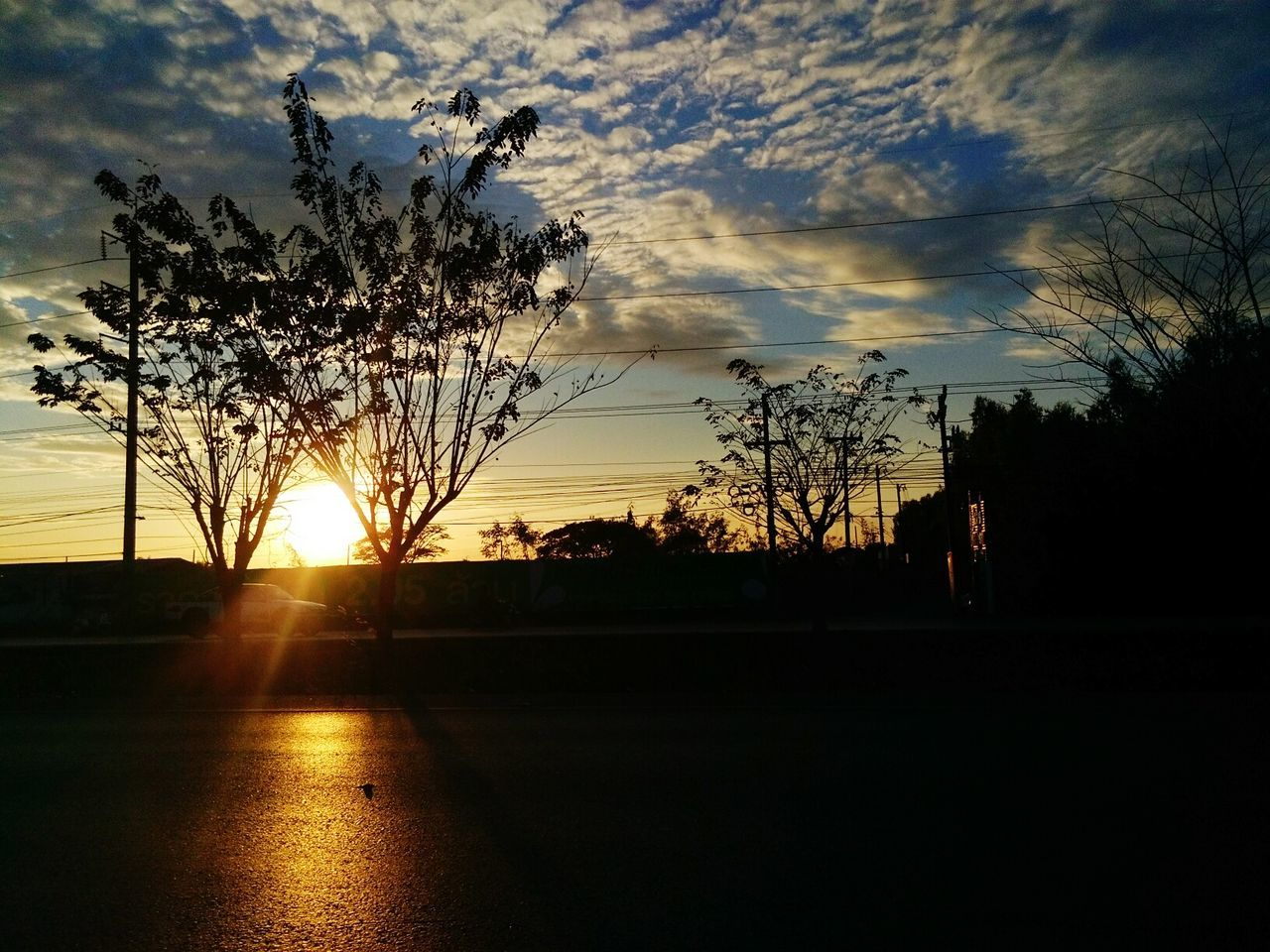 tree, sunset, silhouette, sky, nature, beauty in nature, sun, no people, growth, cloud - sky, road, scenics, outdoors, day