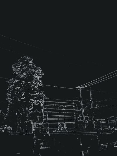 Black Photo