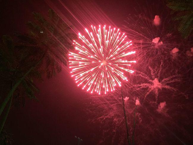 Fireworks Hismajesty Celebration