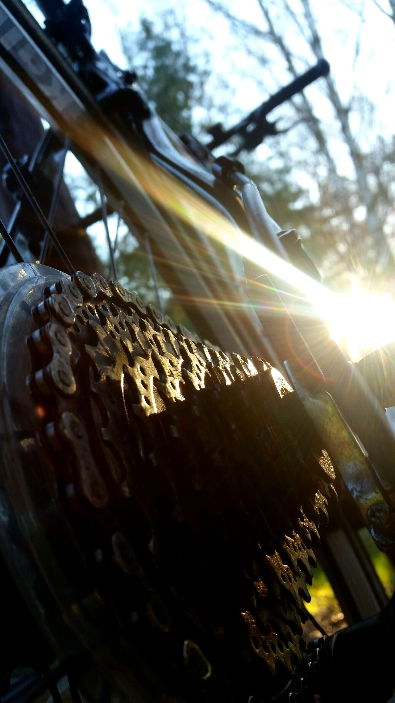 Sunlight Lens Flare Sunbeam Sun Close-up Low Angle View No People Sky Nature Outdoors Day Fahrradtour Bicycle