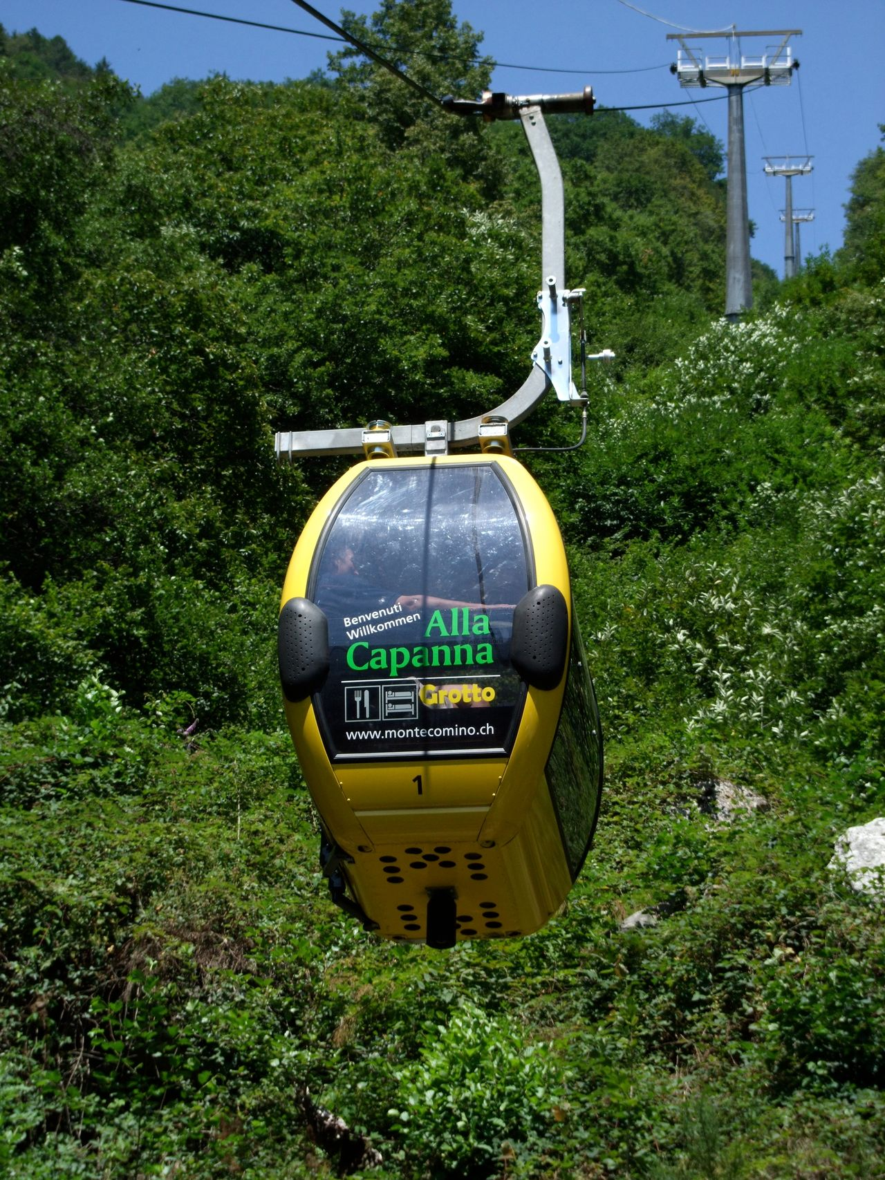 Cablecar Day Grass Green Color Growth No People Outdoors Tree