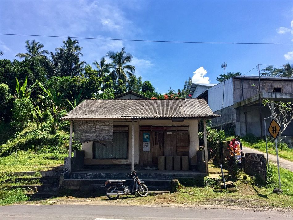 Architecture Built Structure Tree Building Exterior Day Bicycle Sky Transportation Outdoors No People Ubud Ubud, Bali Bali Front View