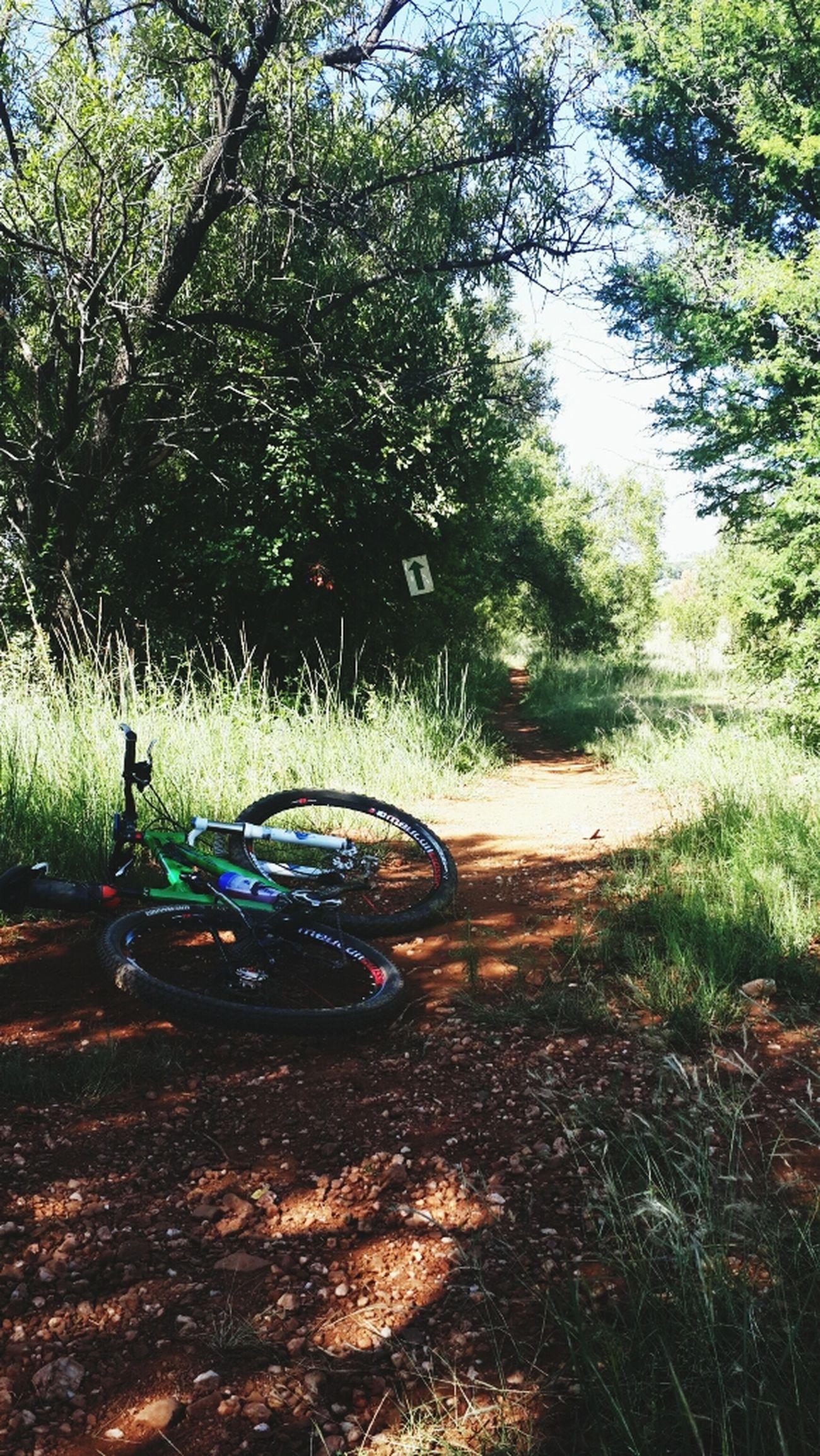 Mtb heaven Cycling
