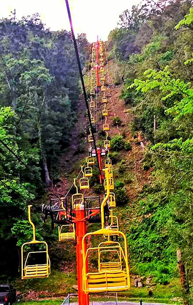 Mountain Skylift Sky Lift Mountain Lift Tram Lift Yellow Lift Lift Tracks In Line Landscape Mountain Range Tree-lined FOLLOW THE LEADER Trees Below High Up In The Mountains People Watching The Great Outdoors - 2016 EyeEm Awards The Essence Of Summer The Architect – 2016 EyeEm Awards Smokey Mountains, Tennessee, Usa