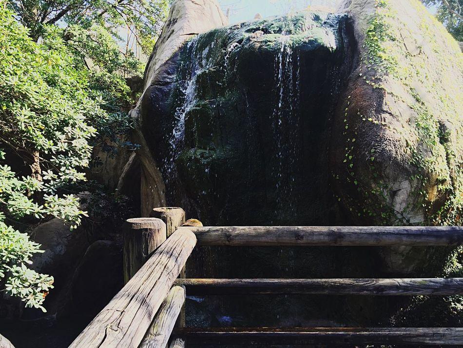 Waterfall Wayerdroplets Water Enjoying Life Taking Photos Outside Beauty Outdoors Beautiful Nature Nature Beautiful Day