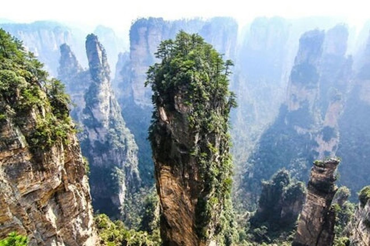 Hello World Taking Photos Beautiful Landscape Nature Beautiful Nature Trees Rock Huggingatree