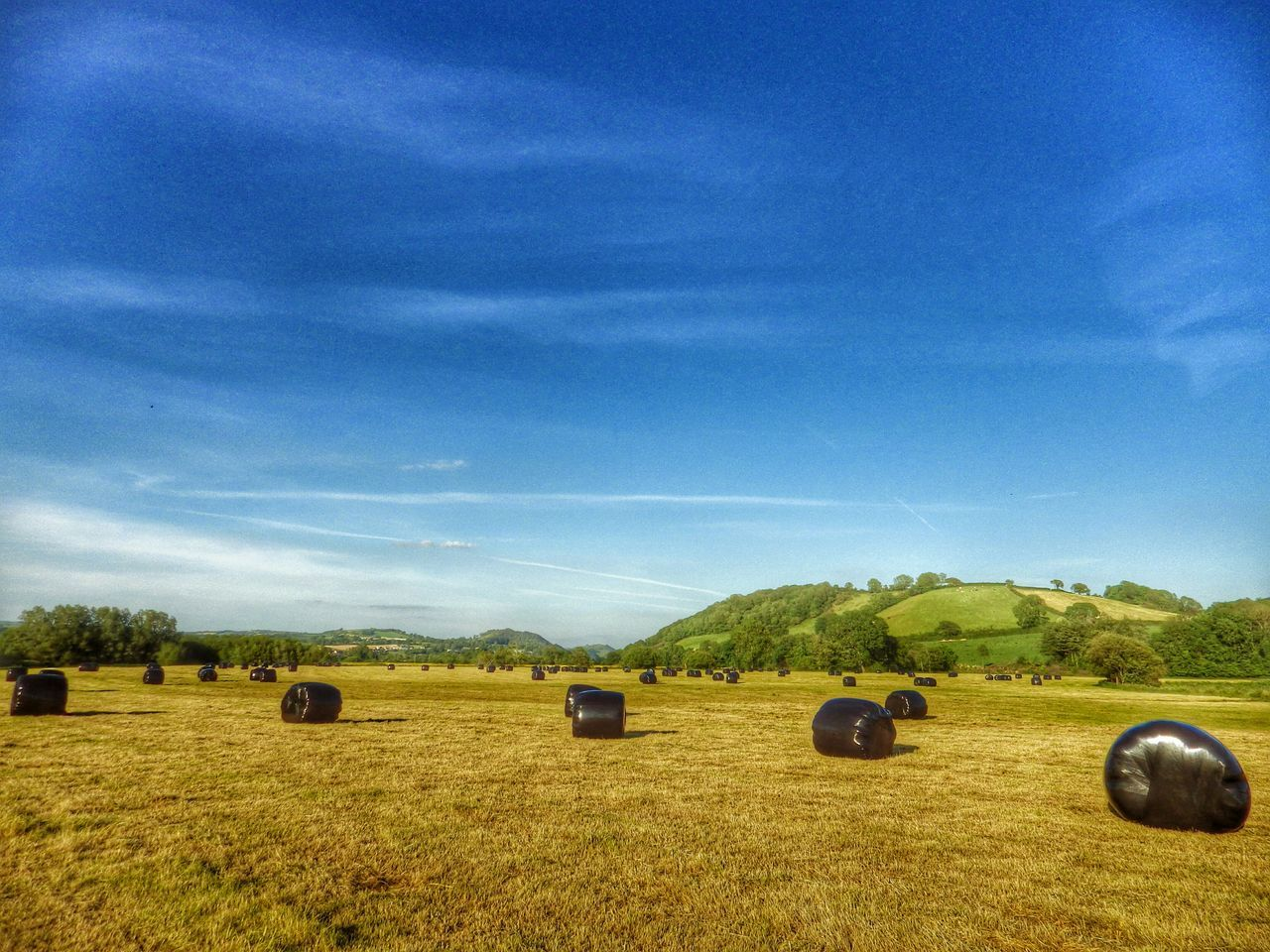 Beautiful stock photos of farm, Agriculture, Bale, Blue, Carmarthen