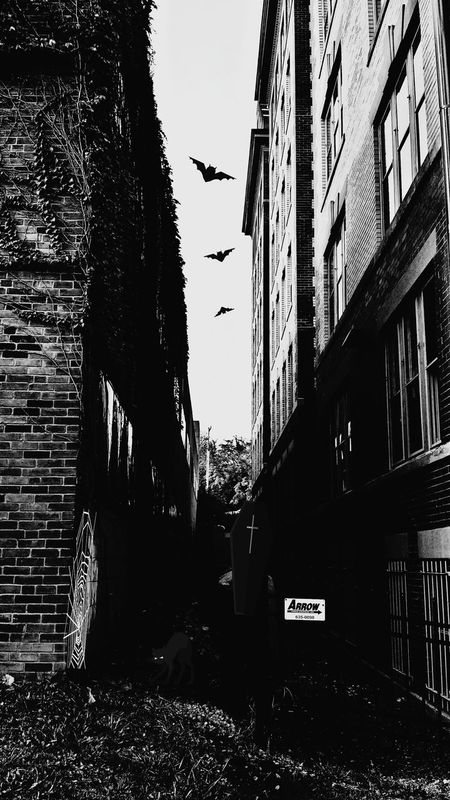 Boo!!! Happy Halloween! Day Of The Dead Alleyway Of Terror Old Alleyways Surrounded By Darkness Creepy Spooky Atmosphere