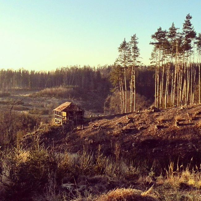 Chata LES Vlese Zadnyles Mytina Zapadslunce Sunset Cabin Forest Noforest Glade