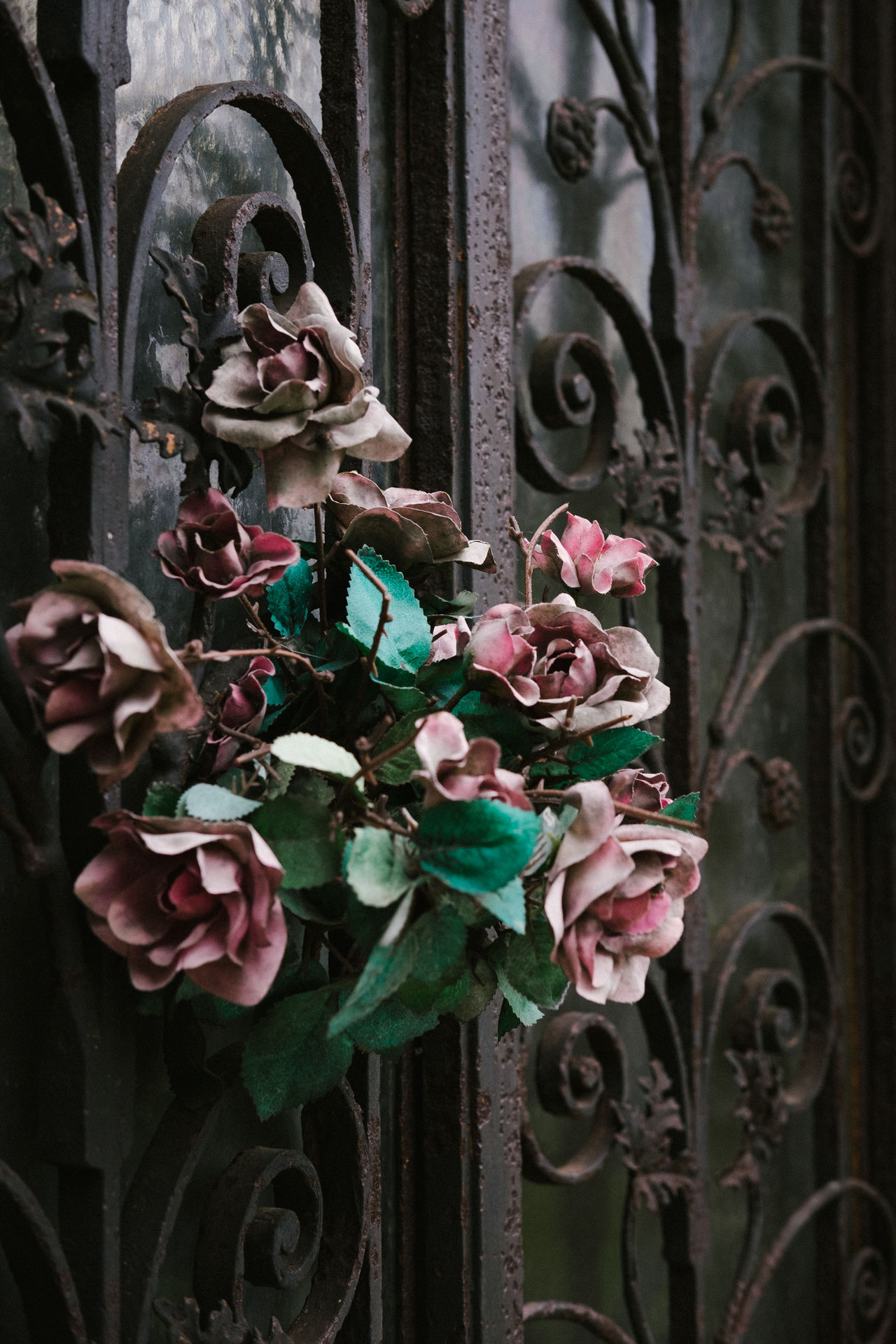 Cemetery City Close-up Day Dead Flowers Dried Flowers Faded Colors Flower France Mausoleum No People Outdoors Paris Père Lachaise Tomb Wrought Iron Wrought Iron Design
