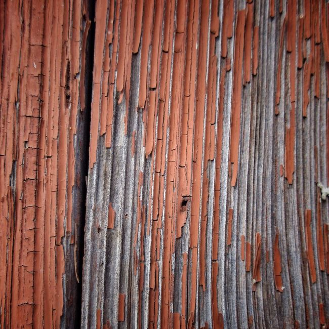 Backgrounds Textured  Full Frame Rusty Weathered Damaged Pattern Close-up Outdoors No People Day Paintdecay Wood
