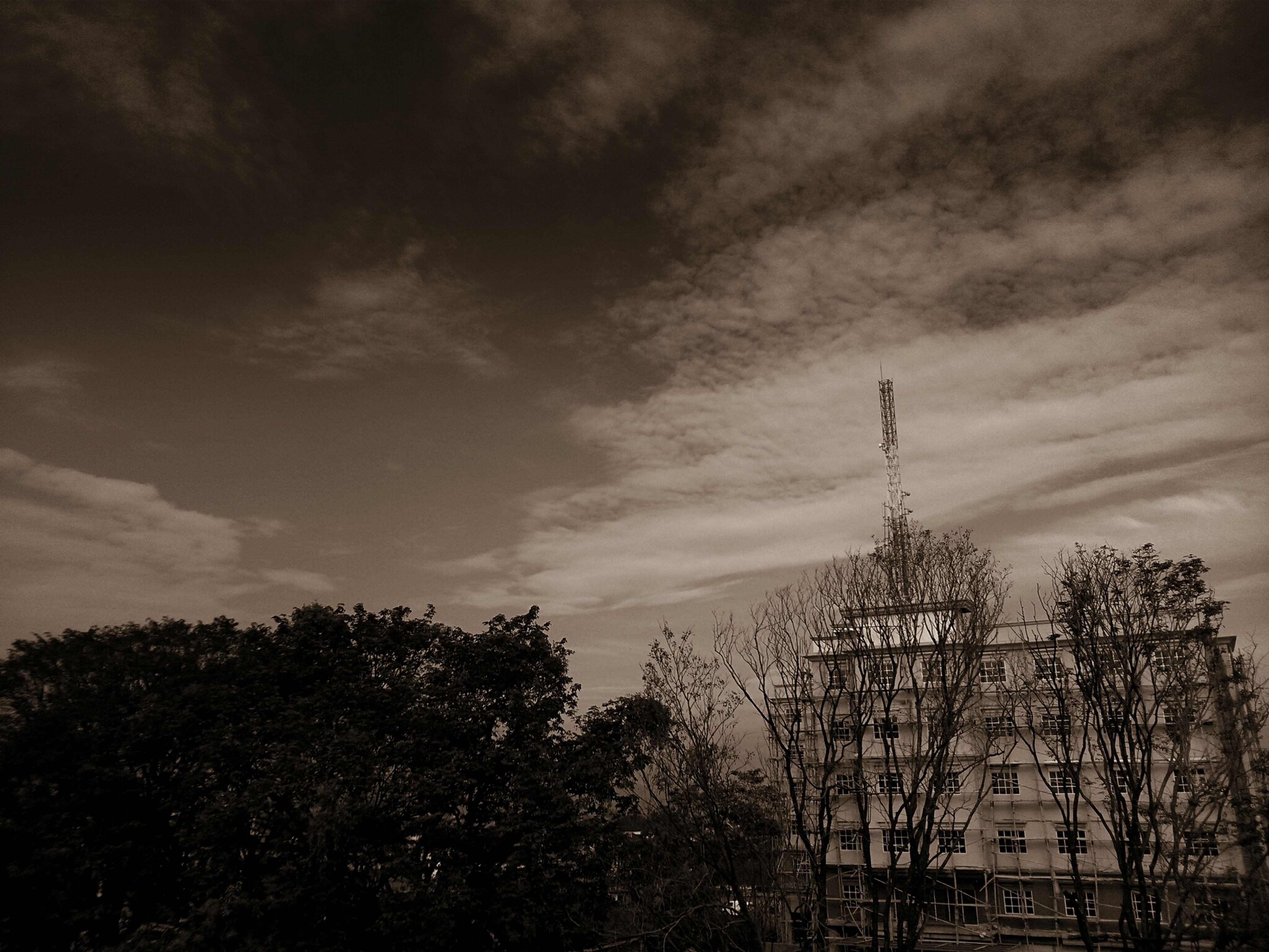 sky, tree, low angle view, cloud - sky, building exterior, built structure, architecture, cloudy, silhouette, cloud, growth, dusk, overcast, nature, weather, outdoors, no people, branch, city, bare tree