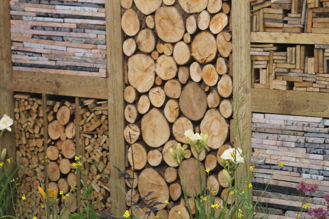 stack, timber, wood - material, log, woodpile, firewood, lumber industry, deforestation, large group of objects, environmental issues, abundance, heap, day, forestry industry, pile, tree trunk, arrangement, no people, fuel and power generation, textured, nature, outdoors, tree, tree ring, close-up