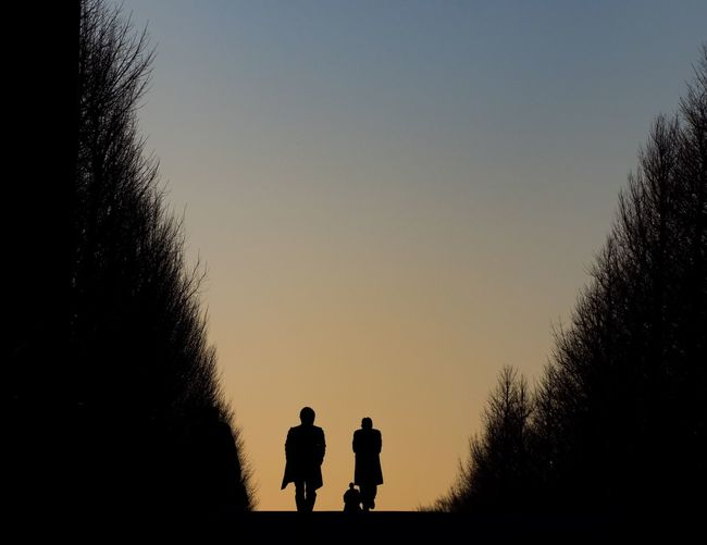 Trees Tree Tokyo Silhouette Togetherness Real People Family Family With One Child Father Walking Clear Sky Men Lifestyles Bonding Sky Leisure Activity Bare Tree Outdoors Nature Shades Of Winter EyeEmNewHere Business Stories The Graphic City Love Yourself Colour Your Horizn