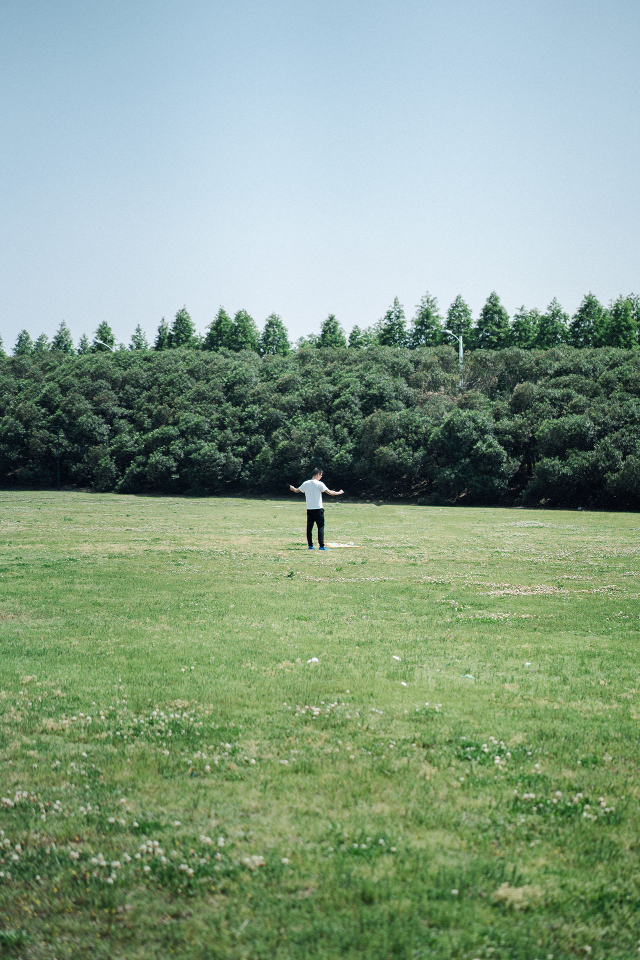 Break The Mold Clear Sky Field Full Length Grass Landscape Men Nature One Man Only One Person Outdoors People Sky Standing Tree