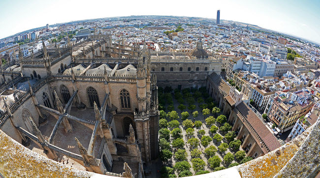 View from Giralda to the west, Cajasol Tower in the background. Arch Architecture Building Exterior Built Structure Cajasol Tower Cathedral Church Culture Famous Place Fish-eye Lens Historic History Perspective Place Of Worship Religion Sevilla Spirituality
