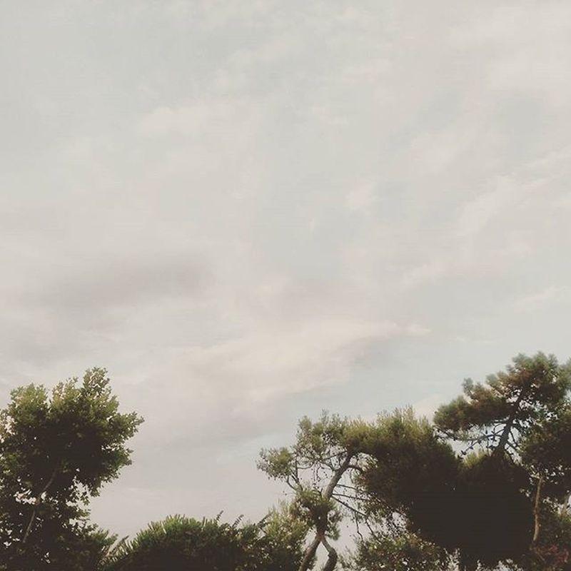 • AFTER THE RAIN THE SUN • Rain Sun Summer Igers igerschieti igersabruzzo francavilla sky clouds skyporn reyes instagram