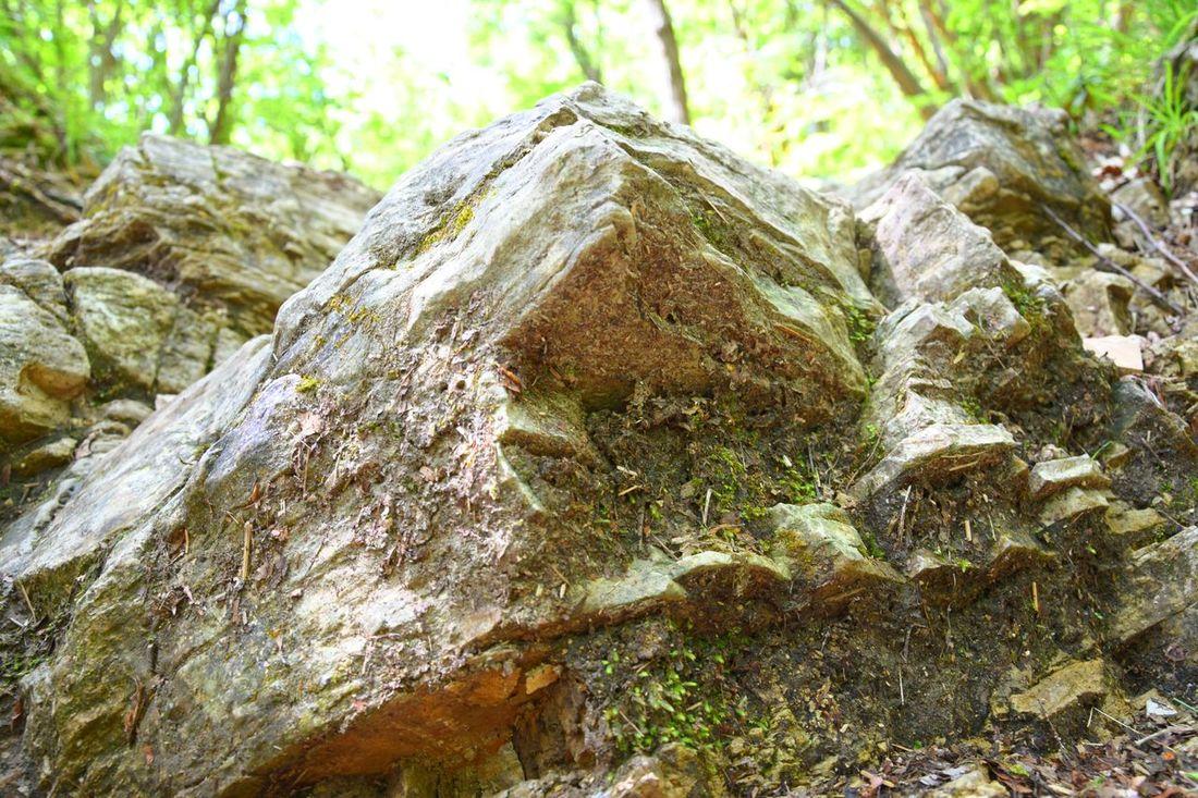 """""""Little Mountain"""" . Campo dei Fiori (Mountain) , Varese - Lombardy, Italy. LittleMountain Outdoors Capture The Moment Nature Naturephotography Macro Sunlight Rock Rocks Mountain Inorganic_matter Nature Is Art Outdoor Naturephotographer Nikon Nikkor"""
