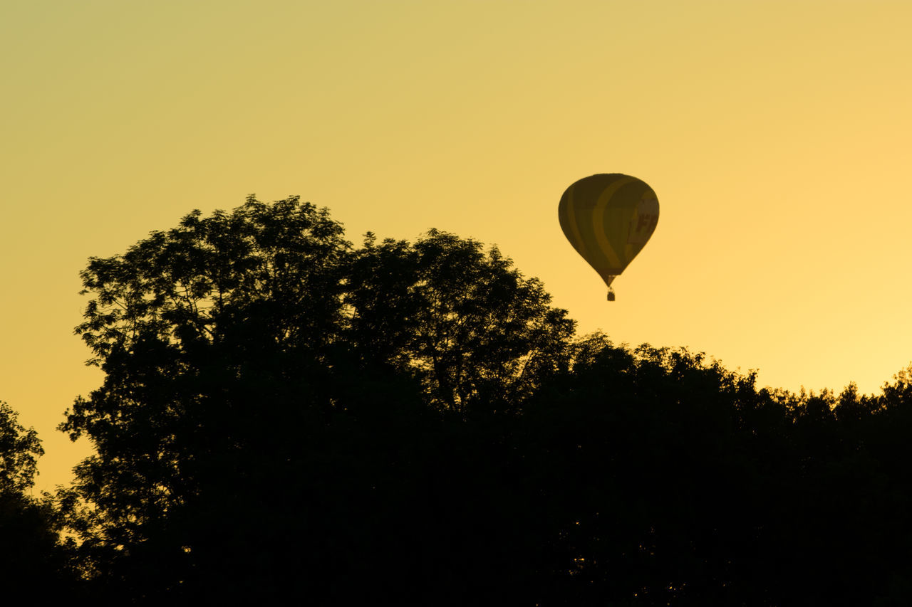 Adventure Auvergne Balloon Beauty In Nature Clear Sky Day Flying Hot Air Balloon Mid-air Nature No People Outdoors Puy De Dôme Scenics Silhouette Sky Sunset Tranquil Scene Tree