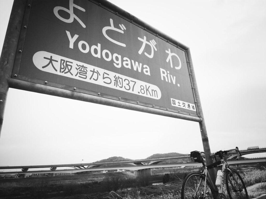 Blackandwhite Cycling Black And White Landscape Bike On The Road Bicycle Black & White Monochrome Roadbike