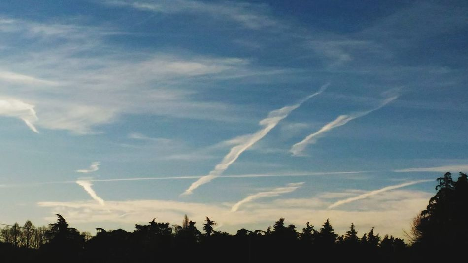 Scie Vapour Trails Sky Linee Serene Azzurro No People Outdoors Day