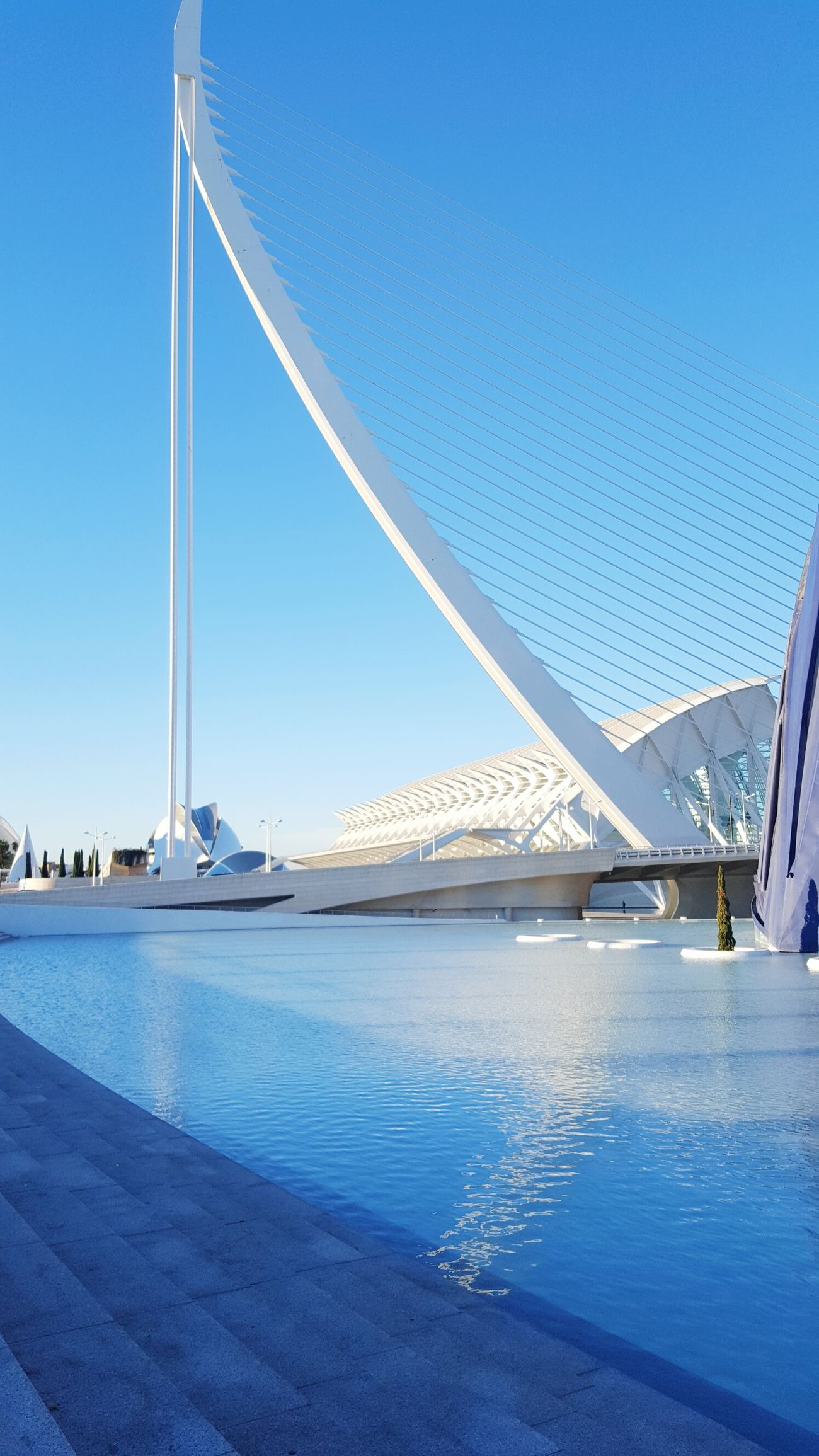 Valencia, Spain Clear Sky Blue Sky Water Outdoors Day No People Architecture Nature Freshness Oceanographic Oceanographic Valencia Oceanografico Oceanografico Valencia Great Outdoors Great Day  Great View Greatview