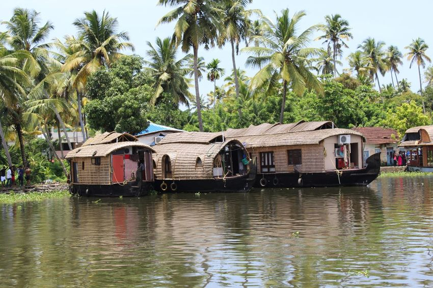 Backwaters in Kerela..!! Backwaters Backwaters Of Kerala Boat Boat House Boathouse Boathouses Boating Boats Boats⛵️ Day Gods Own Country Heaven Houseboat Kerela Nature Nautical Vessel No People Occupation Outdoors Palm Tree Scenic Beauty Sky Transportation Tree Water
