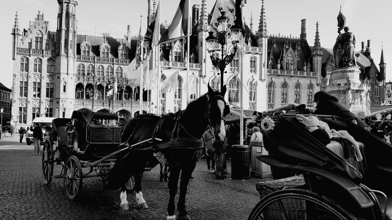 horse, horsedrawn, horse cart, working animal, transportation, domestic animals, building exterior, carriage, built structure, mammal, architecture, mode of transport, two animals, street, outdoors, city, day, travel, land vehicle, livestock, real people, men, sky, people