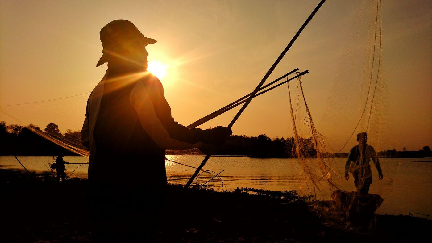 ยกยอ วิธีจับปลาของชาวบ้าน