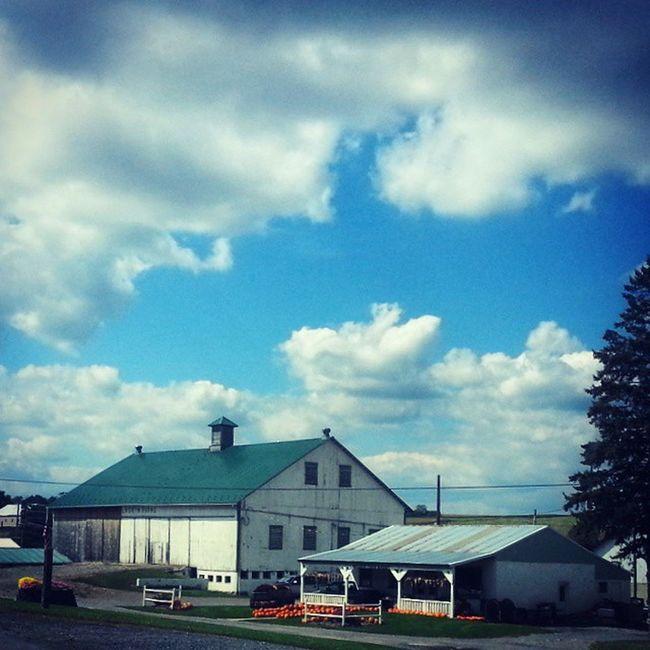 White barn and produce stand Farmporn Skyporn Pumpkins Earlyautumn ruralamerica rurex trb_members1 cumulus tusseymountain pennsylvania