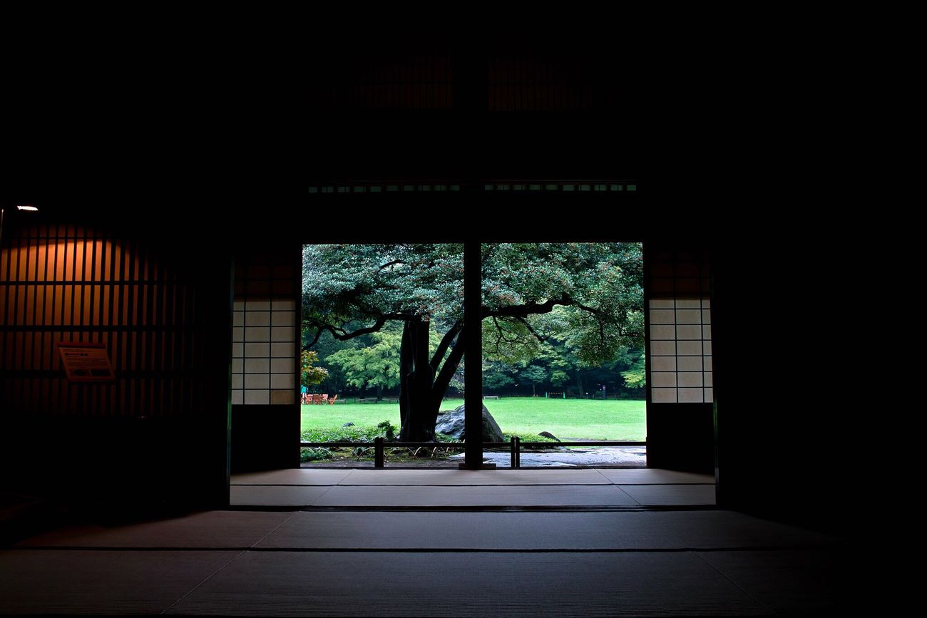 Indoors  Tree Built Structure Dark Entrance No People Architecture Day Nature Garden Japan Photography Japan Culture EyeEm Gallery Japan Room Room Shadow Shadows & Lights Light And Shadow Lights