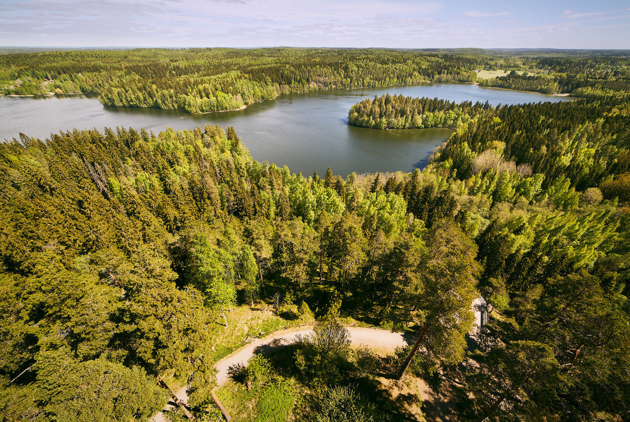 Finnish national landscape view at Aulanko nature park in Finland. Aerial Shot Aerial View Aulanko Finland Forest Forest Trees Fresh Green Green Color High Angle View Hämeenlinna Lake Lake Scene Lake View Landscape Nature Park  Nature Reserve Scenery Spring Springtime Trees Woodlands Woods