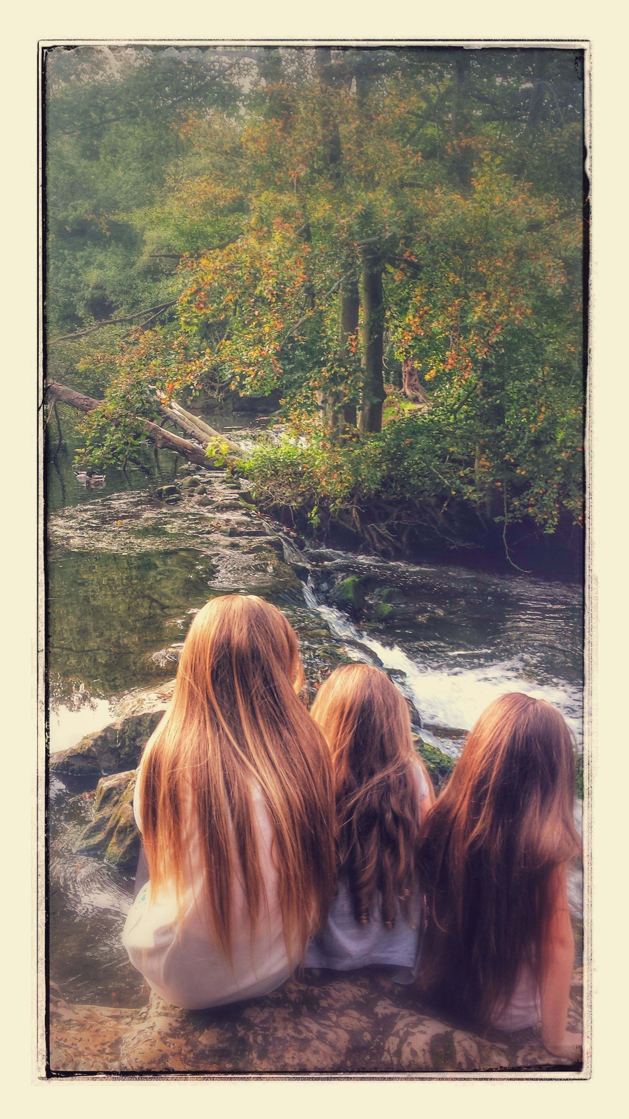 transfer print, auto post production filter, rear view, domestic animals, water, leisure activity, lifestyles, long hair, person, mammal, tree, sitting, dog, relaxation, animal themes, togetherness, day, young women