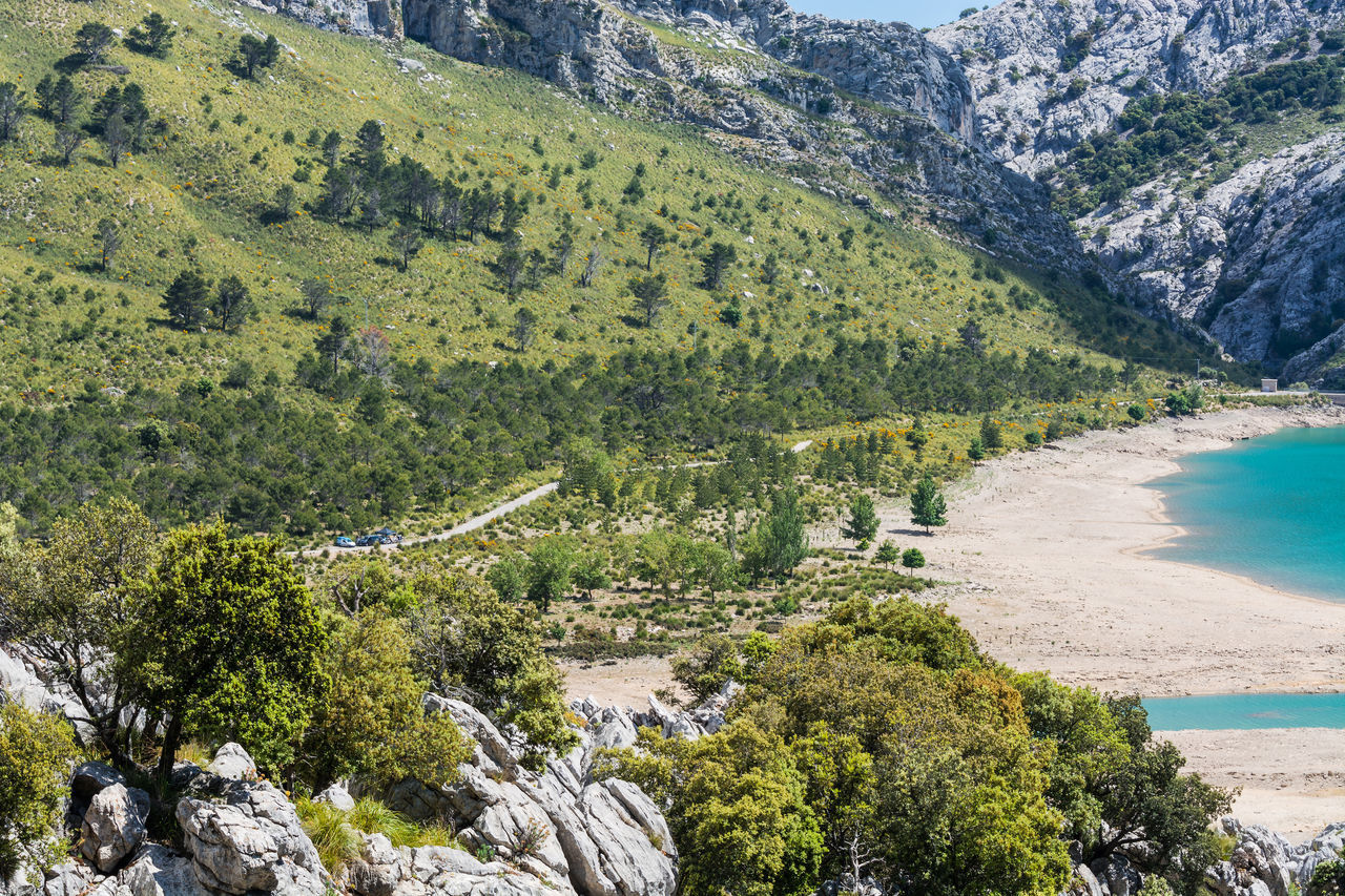 The artificial-scale Cuber reservoir in the Sierra de Tramuntana, Mallorca, Spain Island; Dam; Balearic; Artificial; Beauty In Nature Day Drinking Water; Green Color Growth Mallorca; Mountain Nature No People Outdoors Scenics Tranquil Scene Tranquility Tree Water
