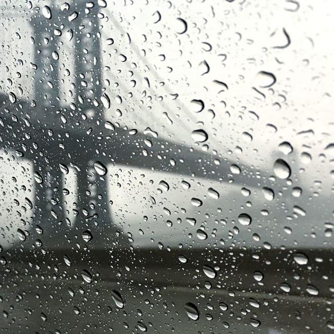 Brooklyn Bridge Rain Season  USA Blackandwhite IPhoneography Weather
