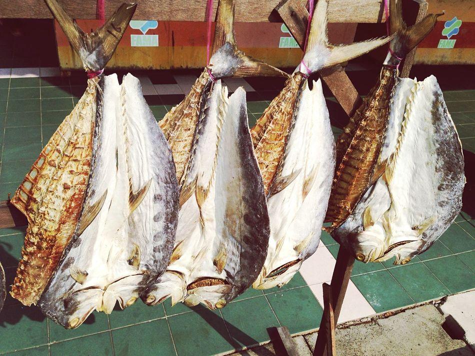 shopping Ikankering Ikanmasin