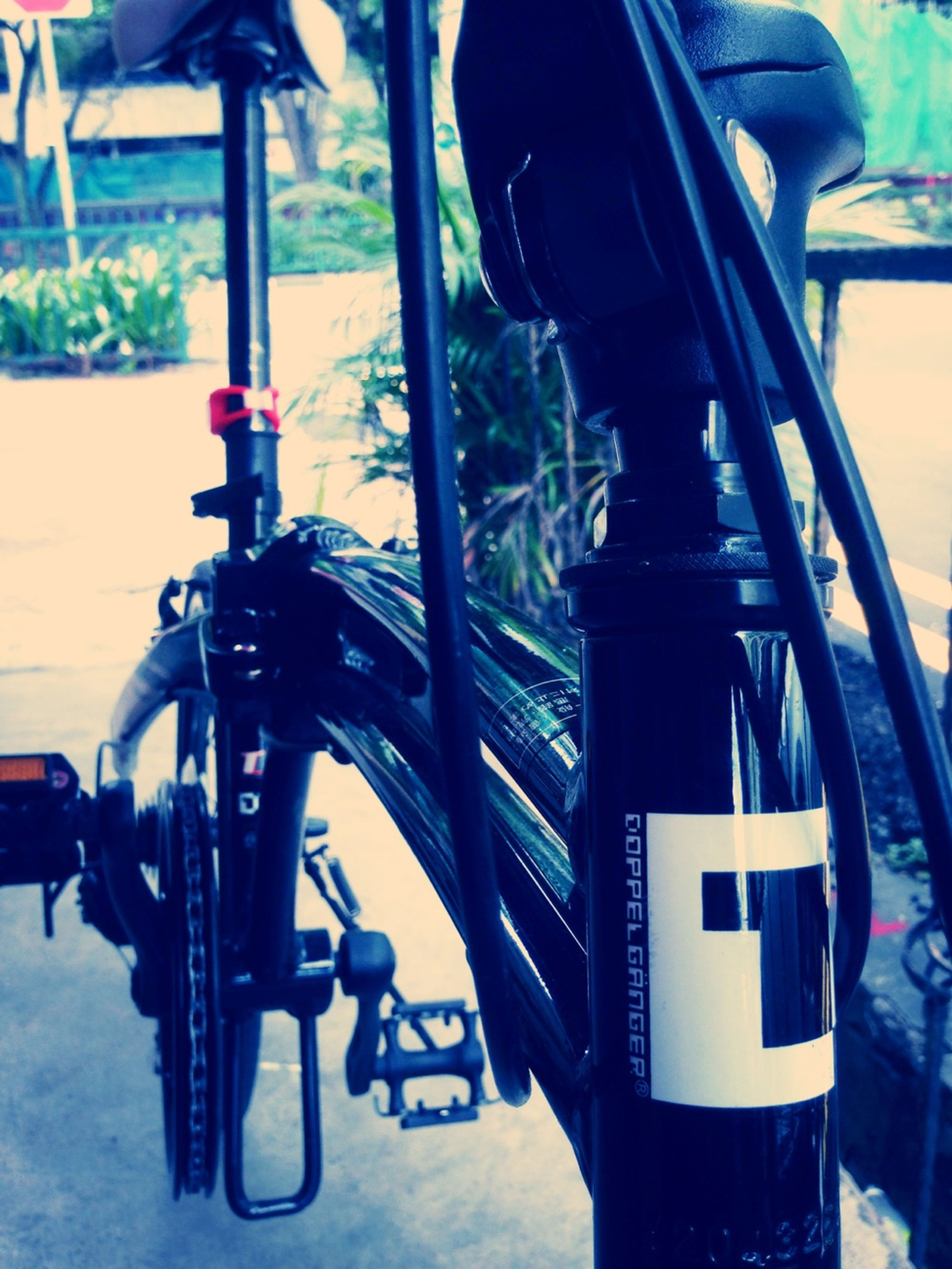 Morning Ride On My Foldy Bike