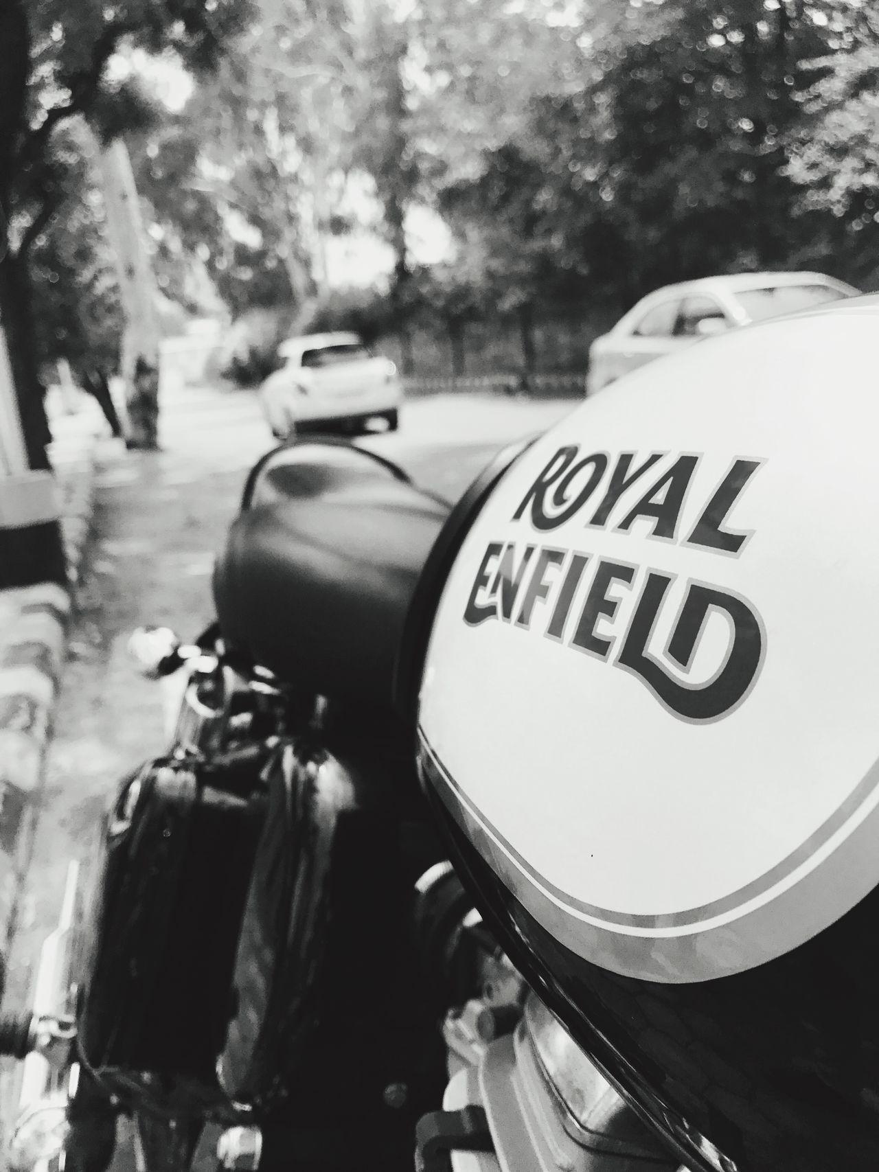 Royalenfieldbeasts EyeEm Selects