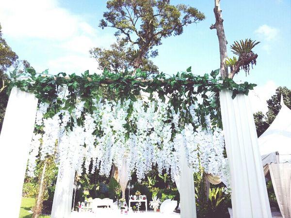 Counsin's Garden Wedding