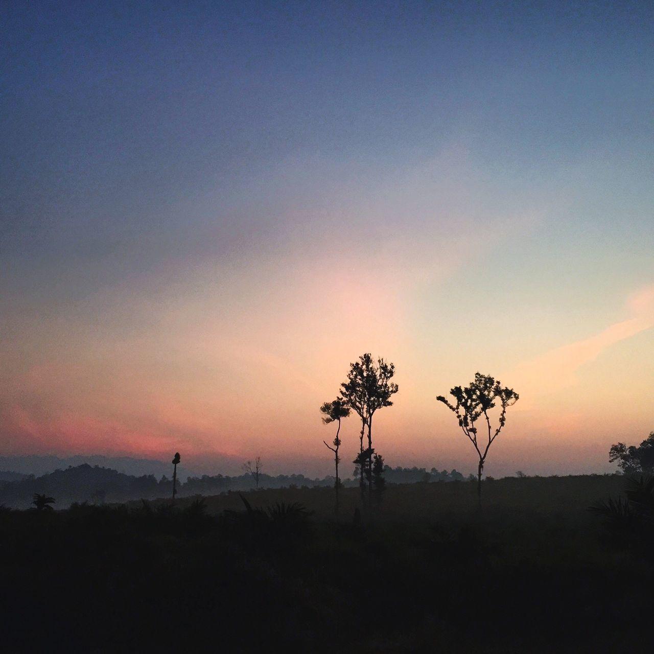 Morning Sunrise Foggy Morning Fresh And Clean