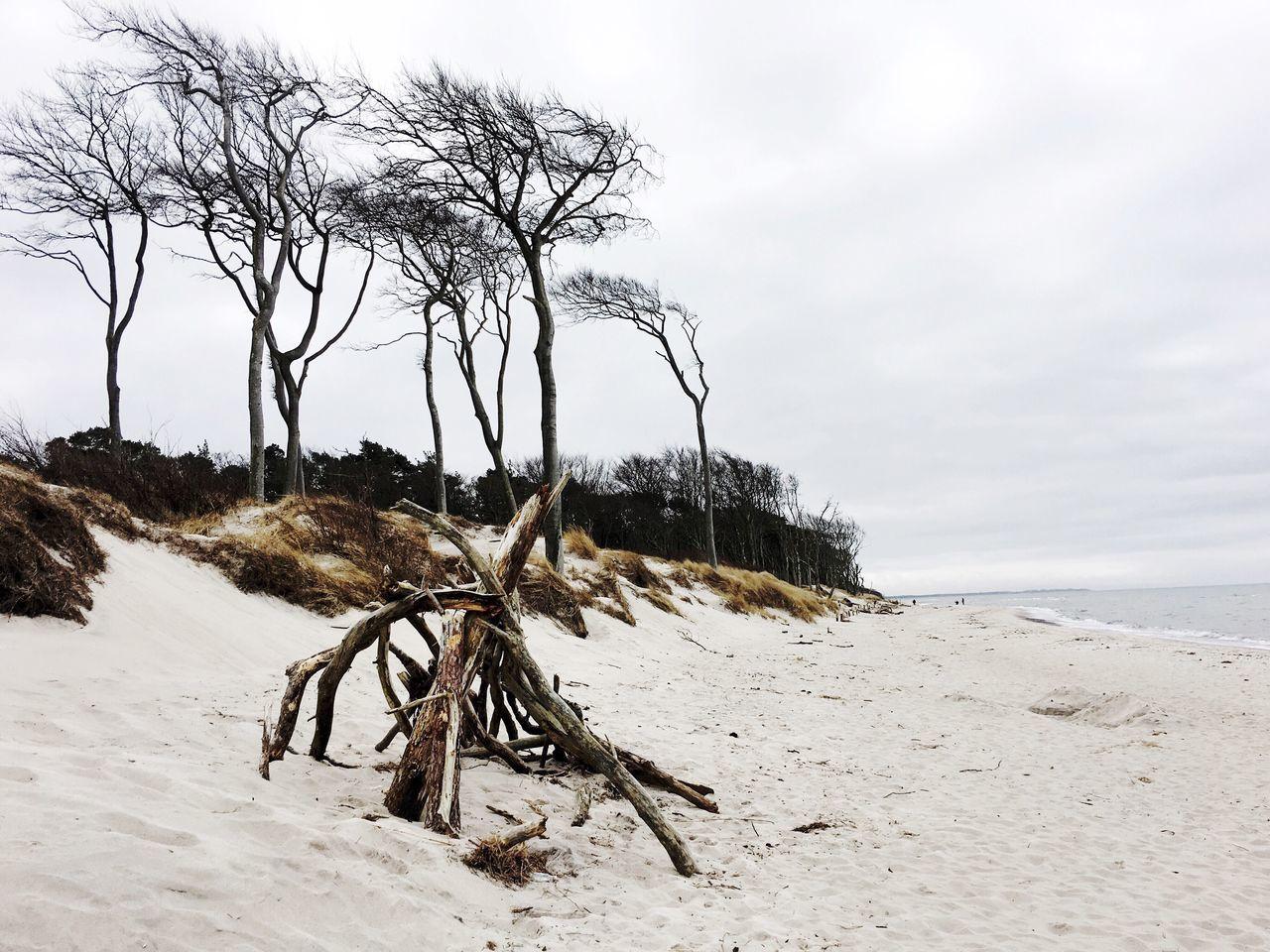 Weststrand Seaside Meer Urlaub Sand Prerow