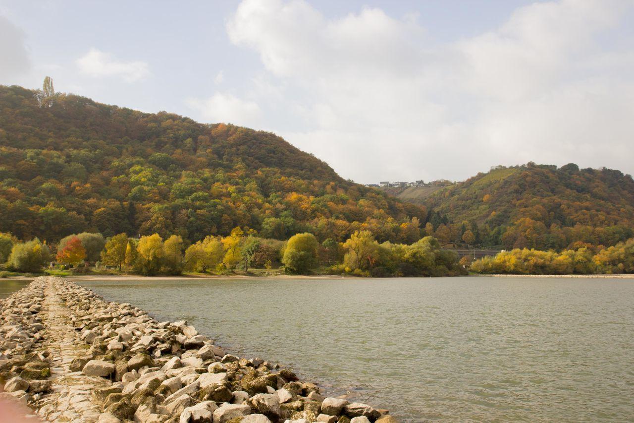 Autumn Autumn Colors Autumn Forest Beauty In Nature Forrest Landscape Outdoors Rhein Rheintal  River Riverside Unesco Word Heritage