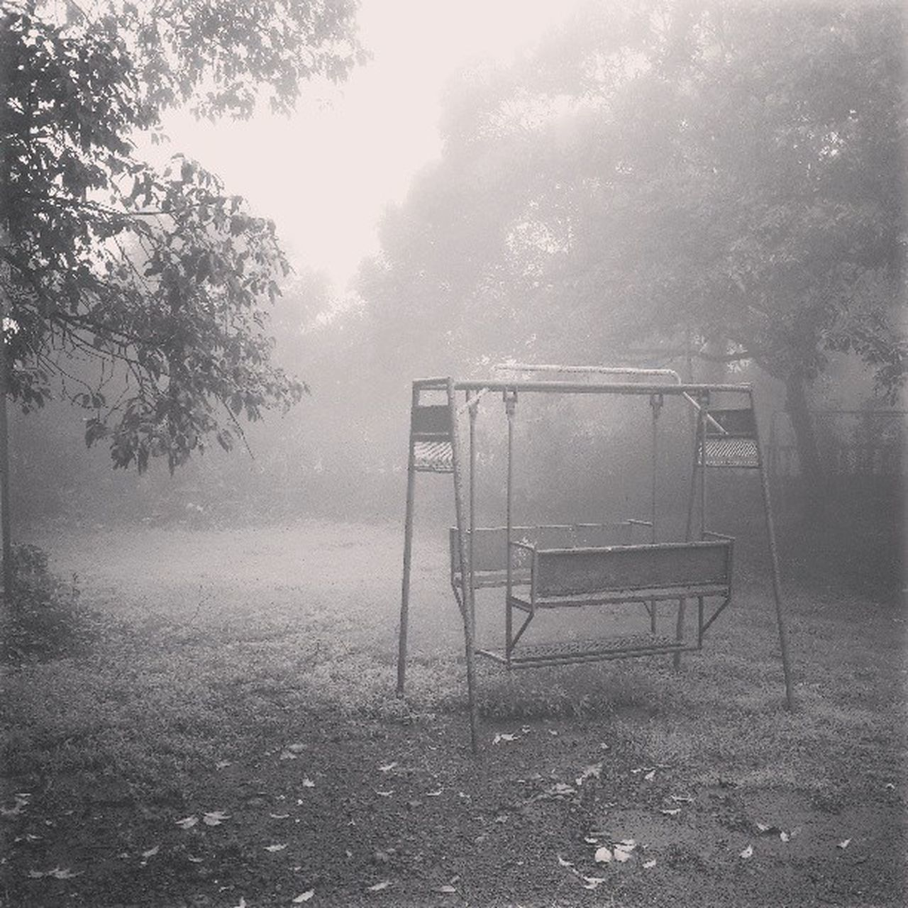 tree, fog, no people, day, nature, chair, landscape, outdoors, beauty in nature, sky
