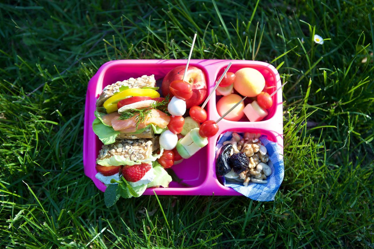 Day Field Food Grass High Angle View Lunch Lunch Box Nature No People Outdoors Sandwich Vegetable