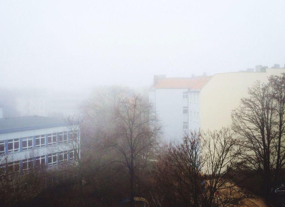 Hazy Shade Of Winter testing the new Eva Filter Fog