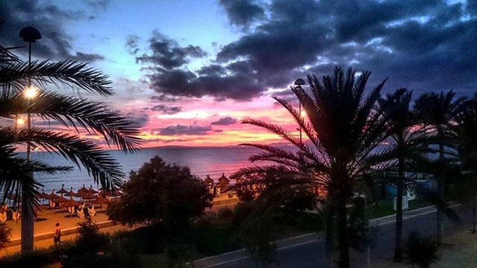 Sunset Mallorca Platjadepalma