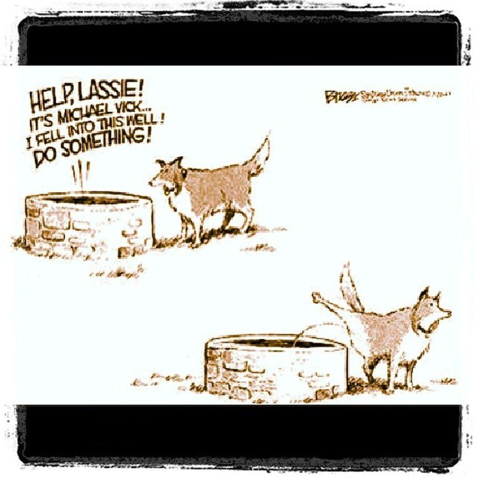 Lol thats right lassie! Dogsofinstagram Loveyourdoggies Karma
